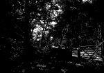 arnside-knott-path