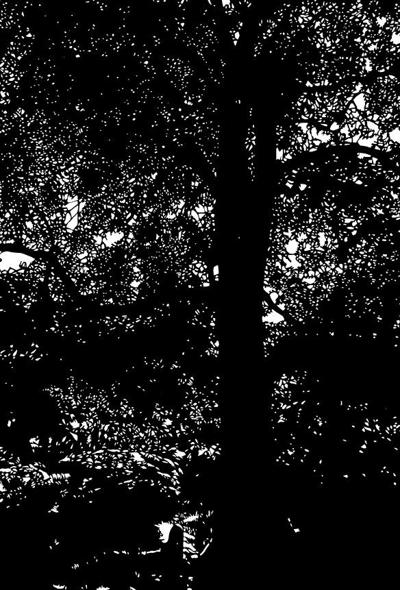 rosa-under-tree
